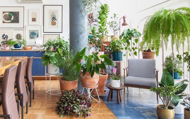 jardim vertical: design verde de interiores.
