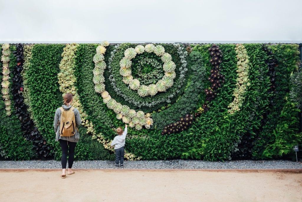parede verde ajuda a conter as mudanças climáticas